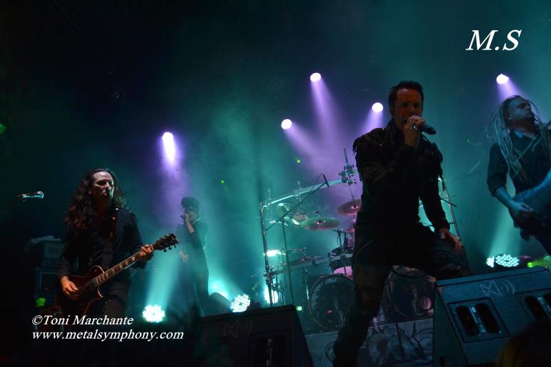 DSC 0560 Kamelot + Xandria + Triosphere + Blackguard   11 de Noviembre12   Sala Caracol (Madrid)