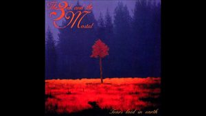 The 3rd and the Mortal: Tears laid in earth // Voices Music & Entertainment AS