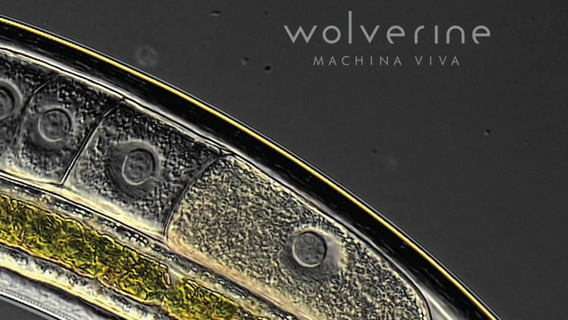 Wolverine: Machina Viva // Sensory Records