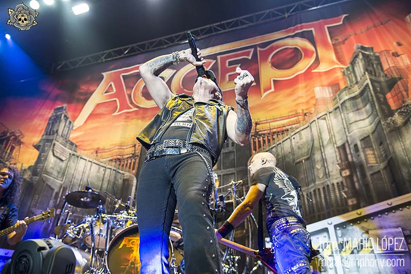 accept-madrid-10