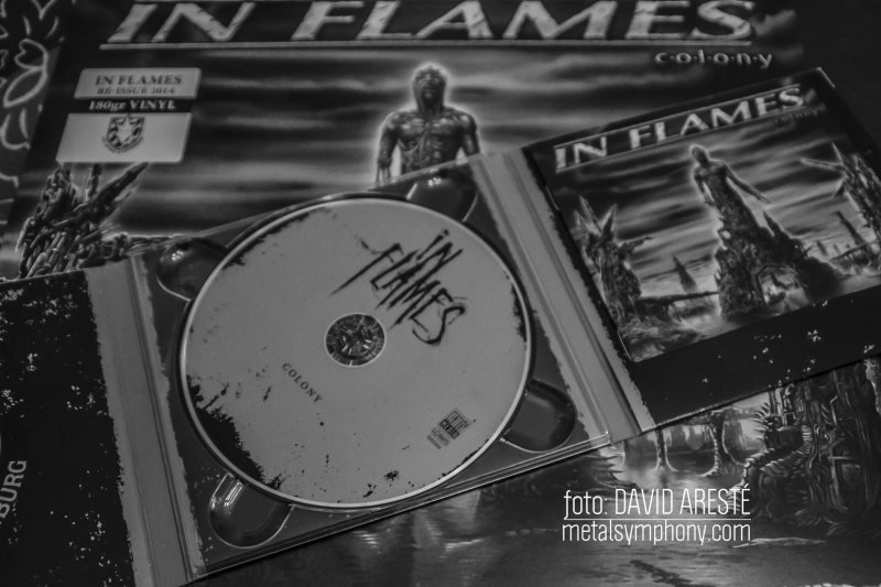 in_flames_colony1