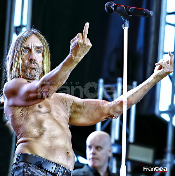 Iggy_Pop-Fran_Cea_Photography-001