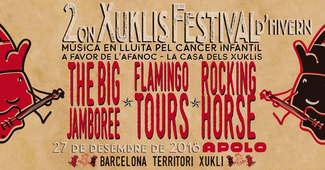Detalles del 2º Festival Rock pels xuklis en Barcelona