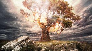 Visionatica: Enigma Fire // Frontiers Music