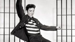 """Ser Elvis. Una vida solitaria"", ya a la venta"
